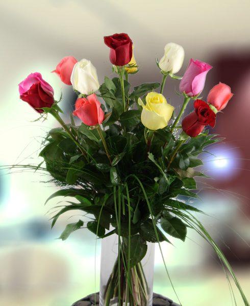 Rosas multicolor extra tallo largo
