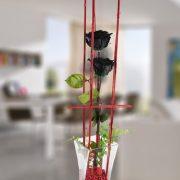 Jarrón con dos rosas negras estabilizadas