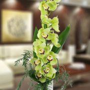 vara-de-orquidea-cymbidium-en-diefrentes-colores-larga-duracion-700