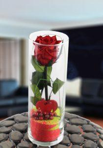 Jarrón de cristal con rosa roja estabilizada (duran para siempre)