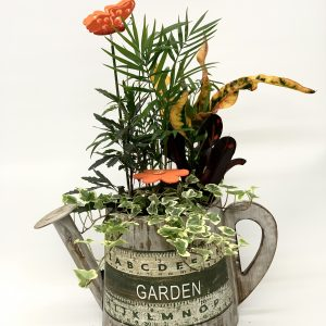 Regadera de madera con plantas