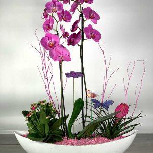 góndola con orquídea y plantas