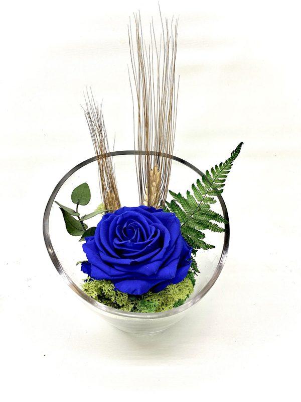 Rosa preservada azul